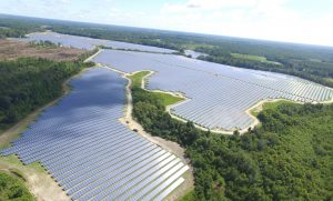 Live Oak Large Ground Mount Solar Array, Candler County, Georgia, solar array, renewable energy, photovoltaic, Interactive Resources, structural engineering